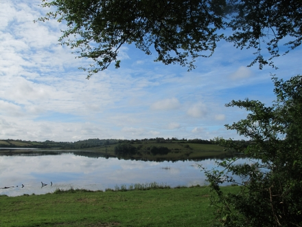 Lough Scur